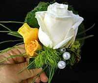 Brautstrauß Dresden - Rosen sind beliebt bei Brautstäußen