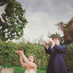 Verschönern Sie Ihren Hochzeitstag durch das steigen lassen von Hochzeitstauben in Dresden und Umgebung
