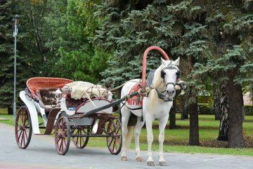 Hier finden Sie Ihre Hochzeitskutsche in Chemnitz/Zwickau und Umgebung