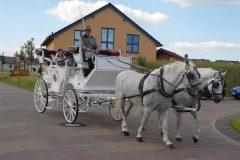 Vermittlung von Hochzeitstouren vom Seepark Auenhain