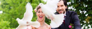 Hochzeitstauben in Chemnitz, Zwickau und Umgebung
