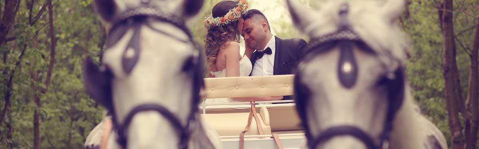 Kusch-und Kremserfahrten zu Ihrer Hochzeit in Dresden und Umgebung